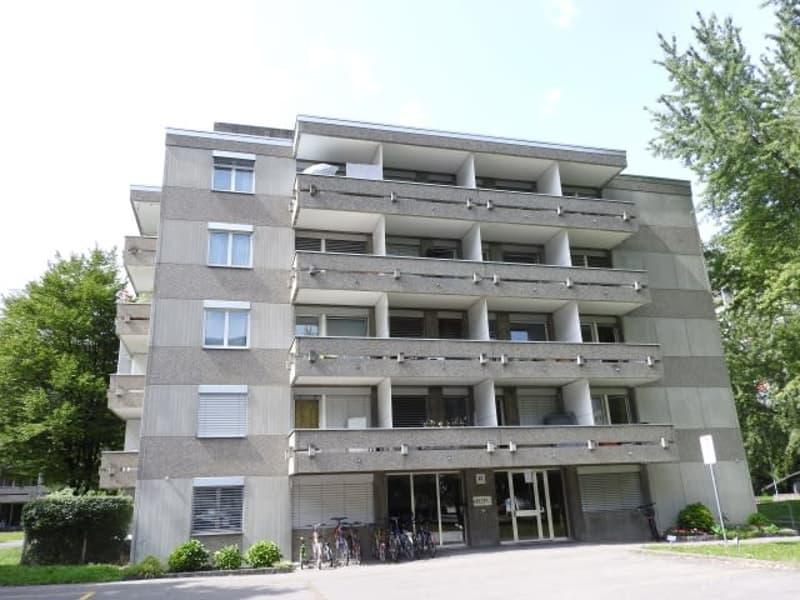 Singlewohnung in Chur zu vermieten!