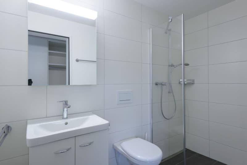 3 1/2 Zimmer Wohnung EG in Bischofszell/Sitterdorf (4)