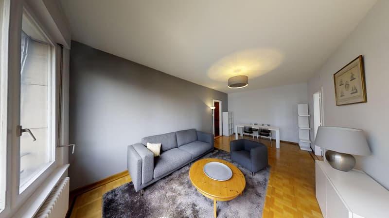 Magnifique appartement de 3,5 pièces meublé à Parc Château Banquet (Perle du lac)