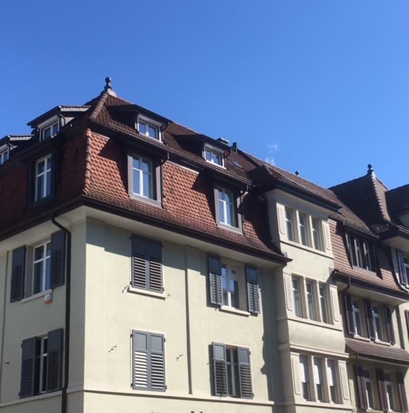 WG-Zimmer in neu renovierter Wohnung in Brugg