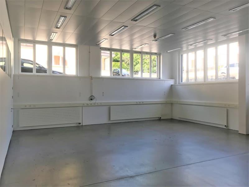 Atelier, dépôt, laboratoire, bureaux de 700 m2 divisibles à partir de 350 m2 à louer à Peseux