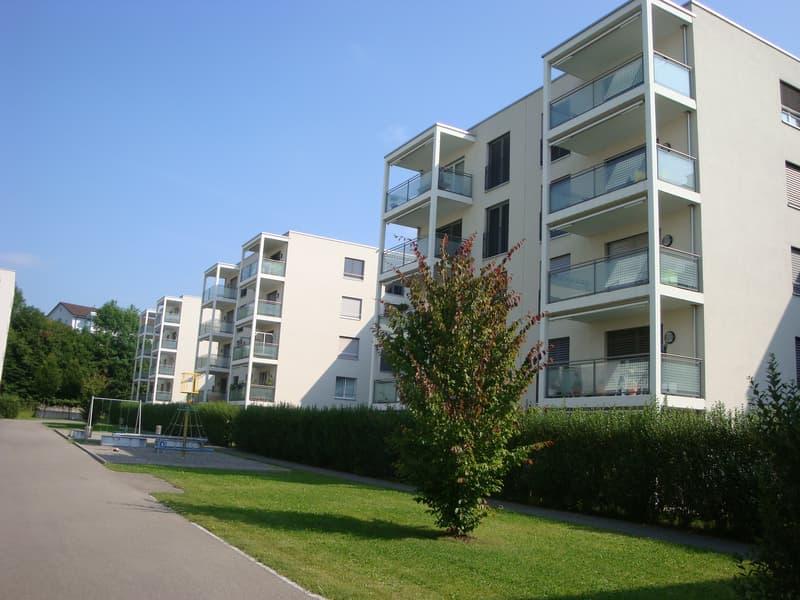 Helle und ruhige 4.5-Zimmerwohnung in Luzern
