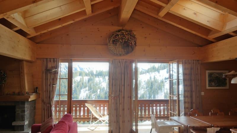 Superbe appartement tout confort situé aux combles, près des pistes de ski, vue magnifique