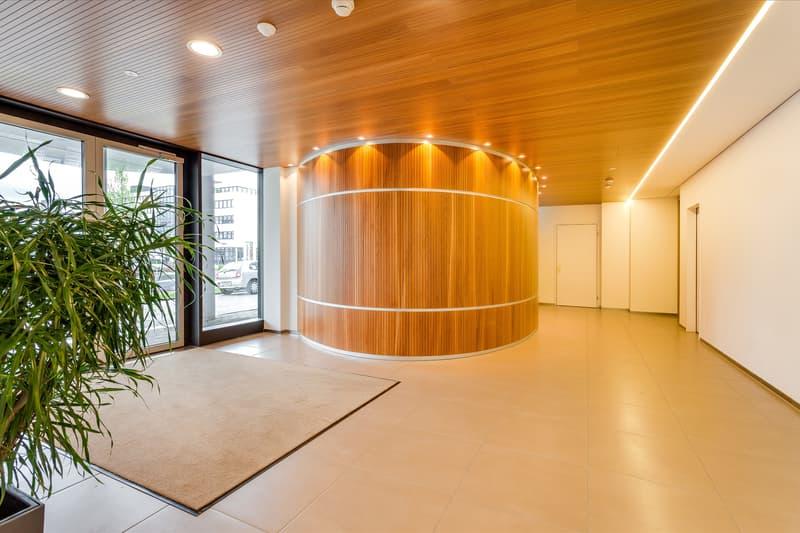 Hochwertiger Eingangsbereich Hinterbergstrasse 17