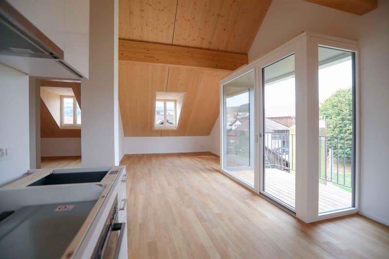 Neu renovierte Dachwohnung