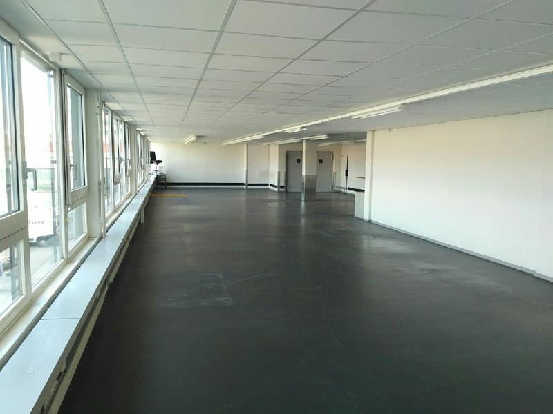 Top Gewerbeflächen in Regensdorf ab 300 m2 - 687 m2