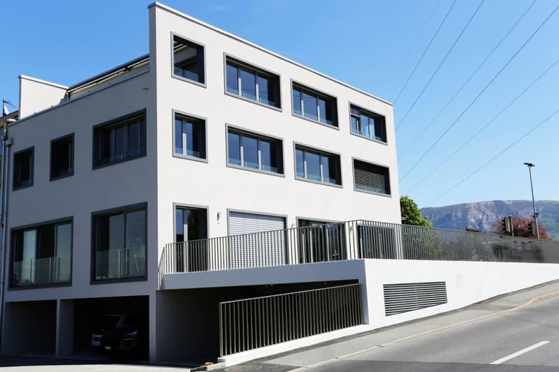 Immeuble neuf totalement loué / Rive gauche Genève