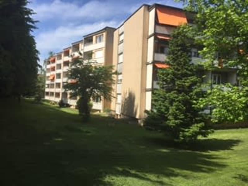 Renoviert 3.5 Zimmerwohnung im Grünen
