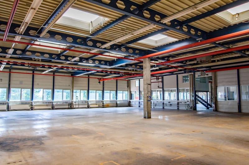 Produktionsfläche EG - ca. 2'500 m2 zusammenhängende Fläche plus Lager