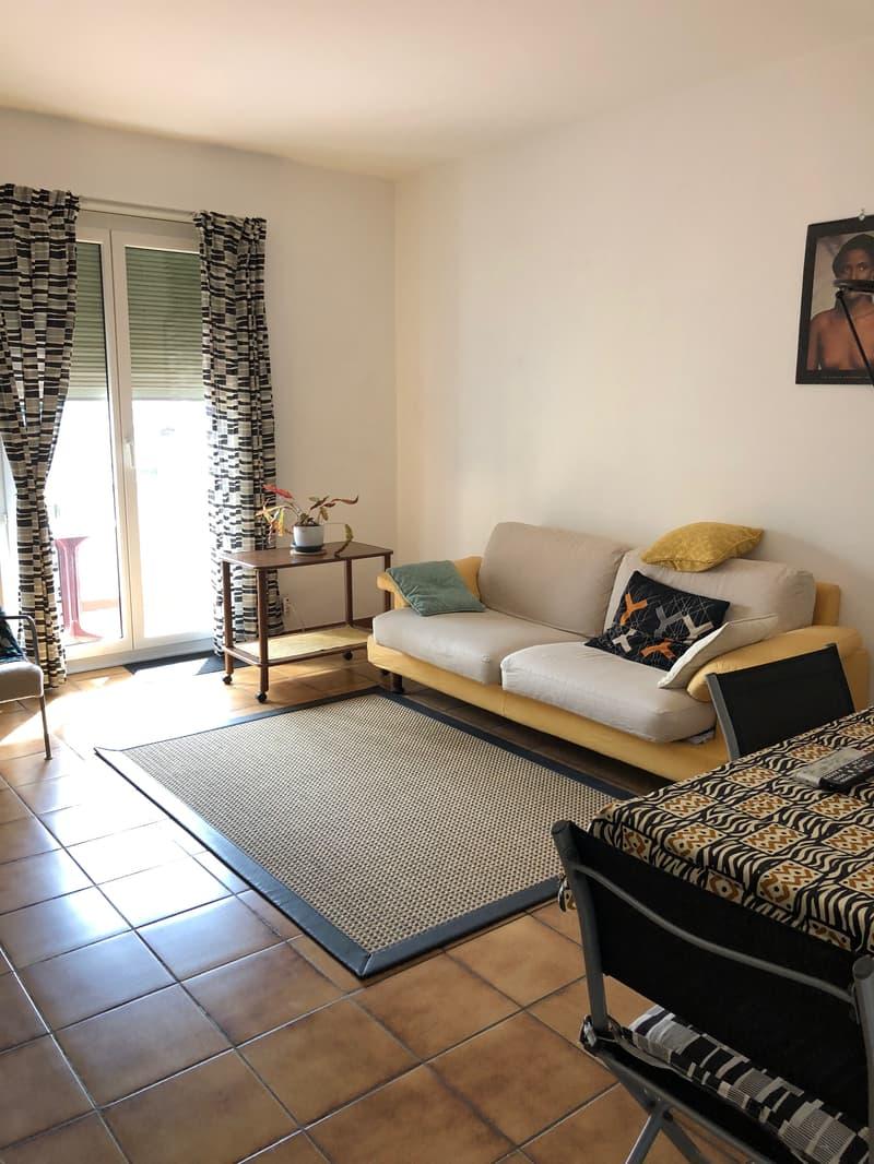 grazioso appartamento 3.5 locali con bella vista