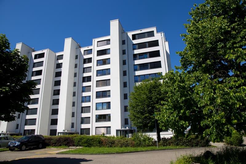 4.5 Zimmer-Wohnung zu vermieten, 2 Monate Gratismietzins