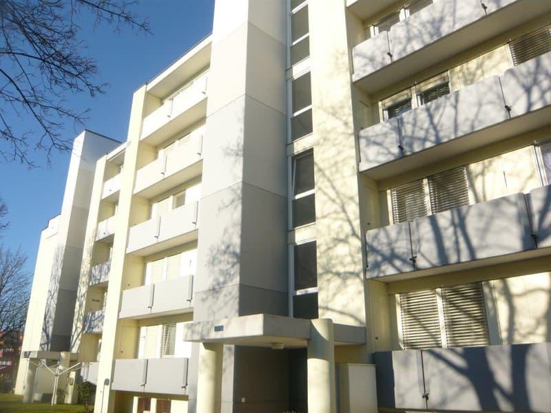 Schöne 4.5 Zimmerwohnung in Würenlingen