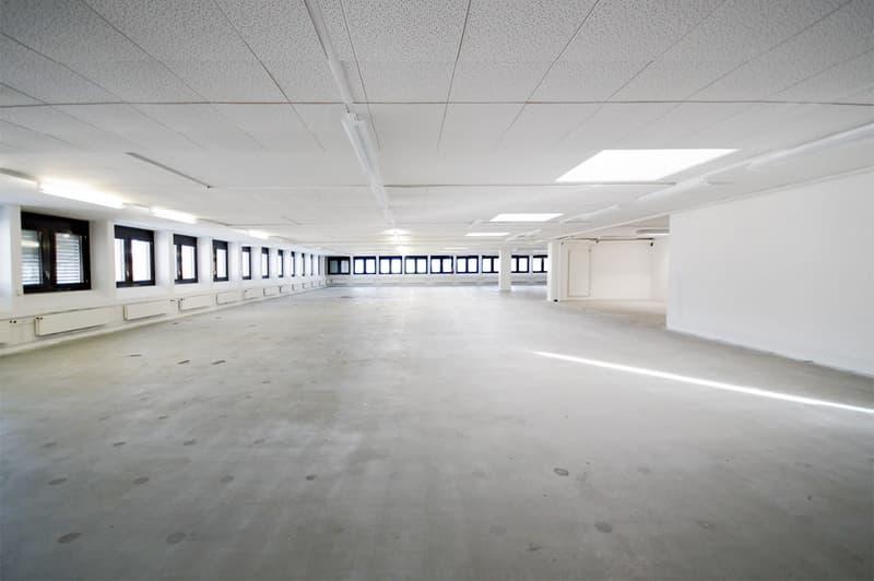 550 m2 Gewerbe-/Lagerfläche mit viel Tageslicht