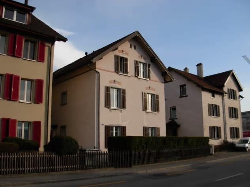 4.5-Zi.- Dachwohnung mit einmalige Aussicht auf den Rhein und Munot