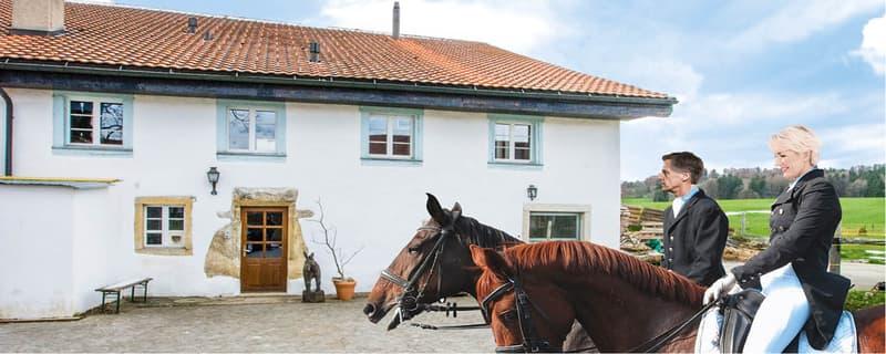 Historisches Bauernhaus mit Einliegerwohnung