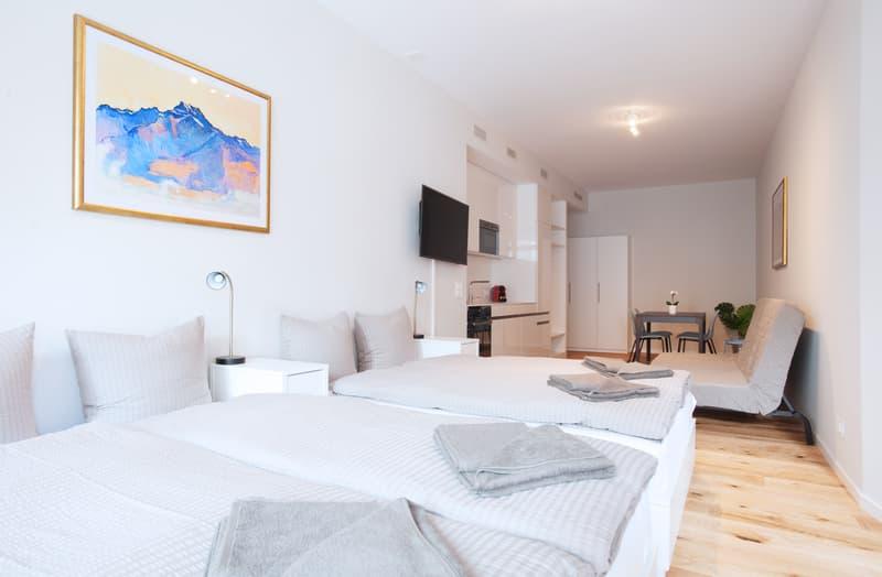 Möblierte und große Studiowohnungen im Zentrum von Basel (Hodler)