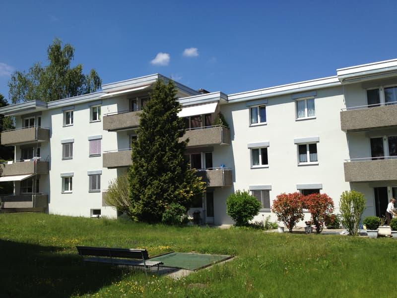3.5 Zimmerwohnung - ruhige Lage in Rudolfstetten