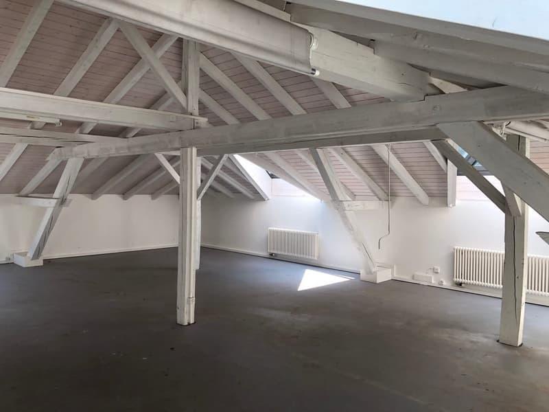 167 m2 Büro- / Atelierfläche - Zürich Binz