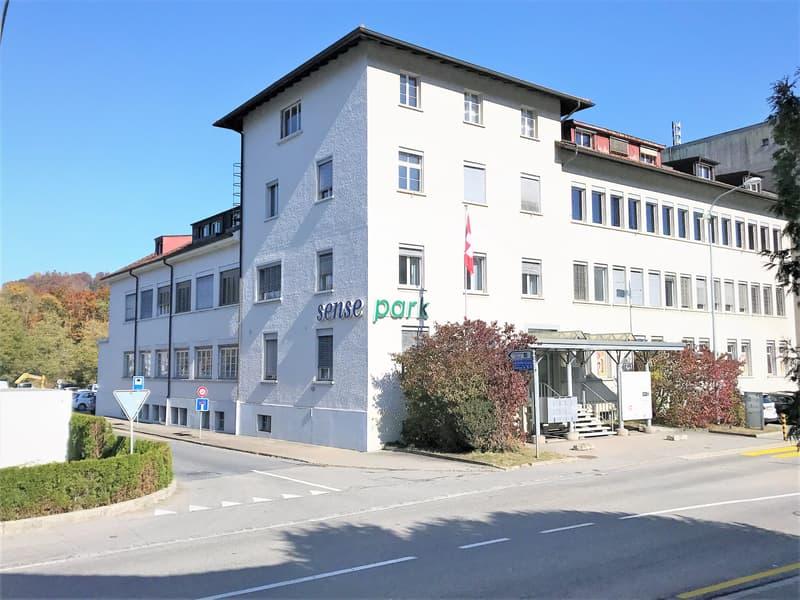 Showroom, bureaux, locaux de 400 m2 divisibles à partir de 100 m2 à louer à Flamatt.