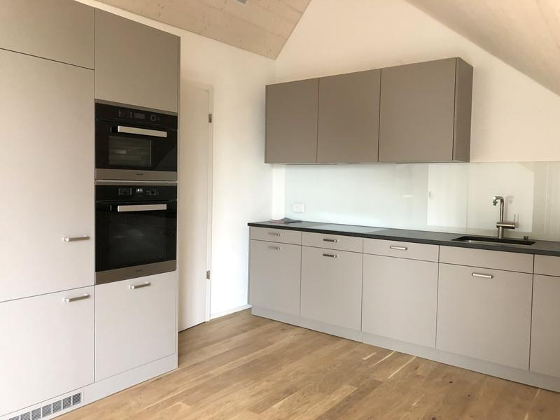 Moderne Küche mit Steinabdeckung und Geschirrspüler