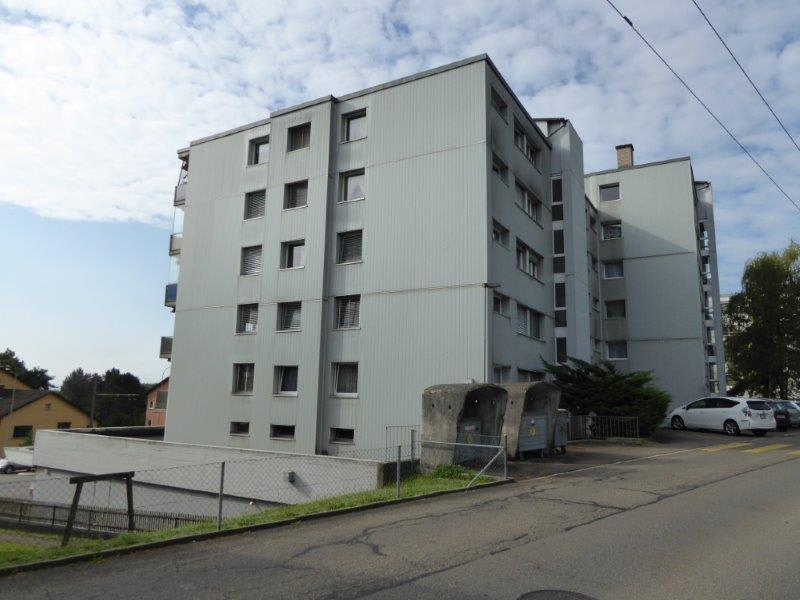 Schöne und grosse 2-Zimmerwohnung zu vermieten