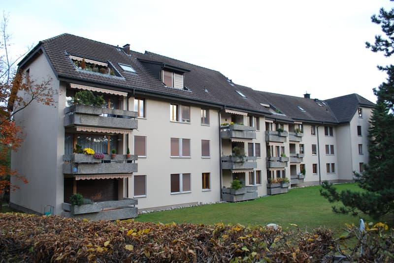 Schöne 3 Zimmerwohnung im Herzen Erlinsbachs!