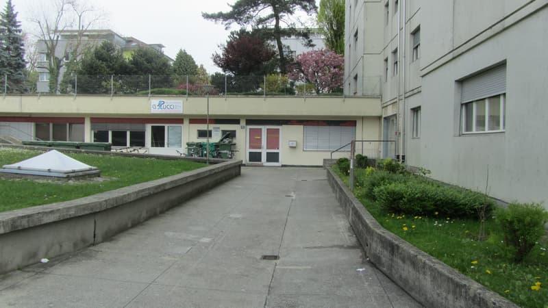 Surface commerciale de 195 m2 de plain pied à Renens