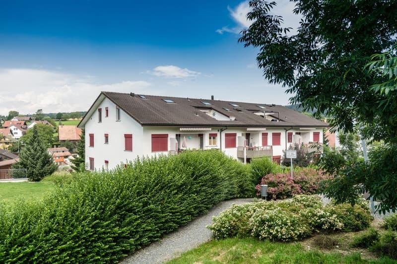 Ruhig gelegene Wohnung auf dem Mutschellen (Berikon/Rudolfstetten)