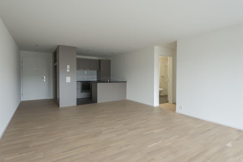 2 1/2 Zimmer Wohnung in Bischofszell (3)