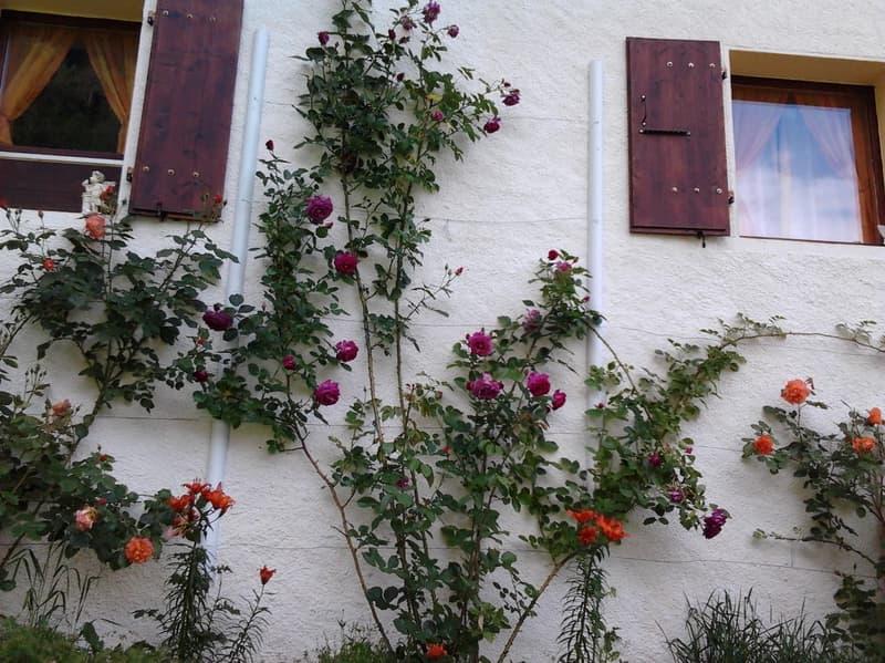 Maison - 4.5 pces - Bémont (Bovernier) EXCLUSIVITE
