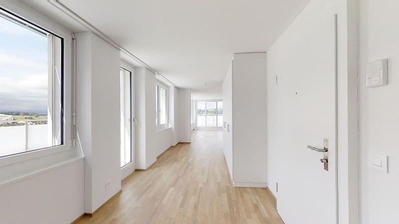 5.5 Zimmer-Attika-Wohnung  mit Panoramasicht