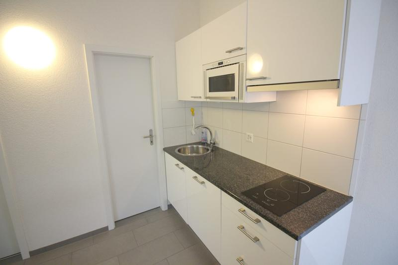 2 Zimmer Apartment in Oerlikon (2)