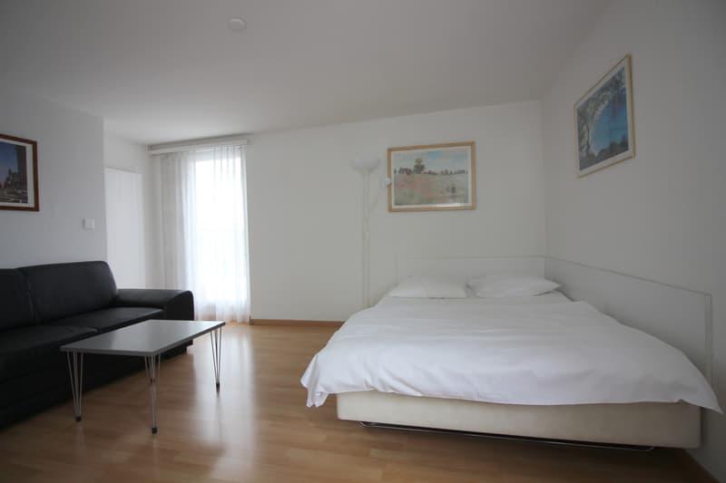 1.5 room Apartment im Zentrum Zürichs
