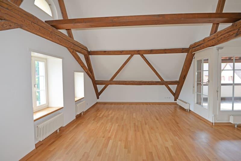Rustikale Dachwohnung im Grünen