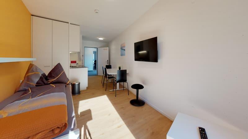 Möblierte 1-Zimmer Stundenten-Apartment
