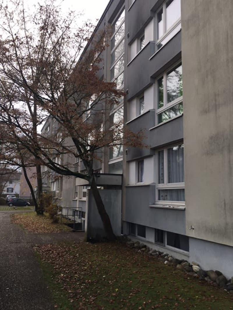 zu vermieten ab sofort 2 Zimmer Wohnung an der Nordstrasse 3 in 4665 Oftringen