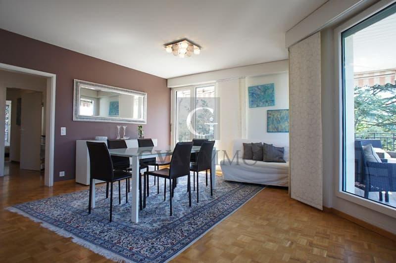 Bel appartement lumineux de 5 pièces avec vue dégagée (4)