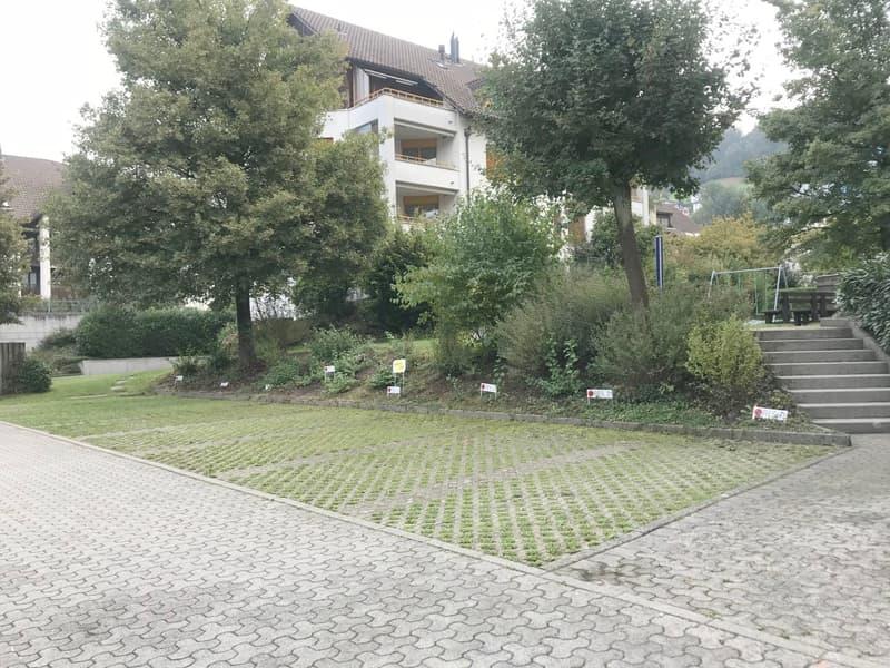 Aussenparkplatz