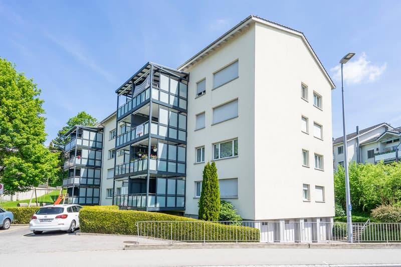 Renovierte Wohnung mit grosszügigem Balkon!