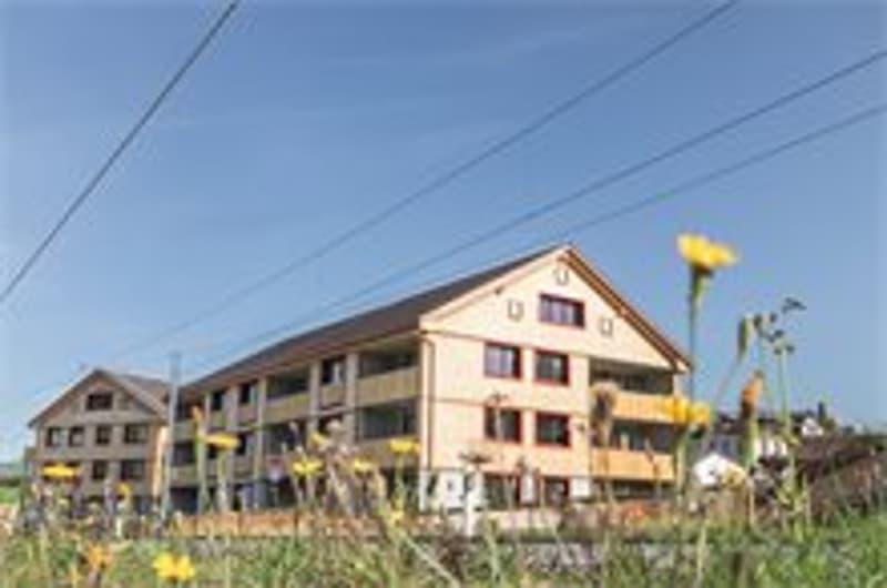 Brülisauerstr. 4 - Steinegg