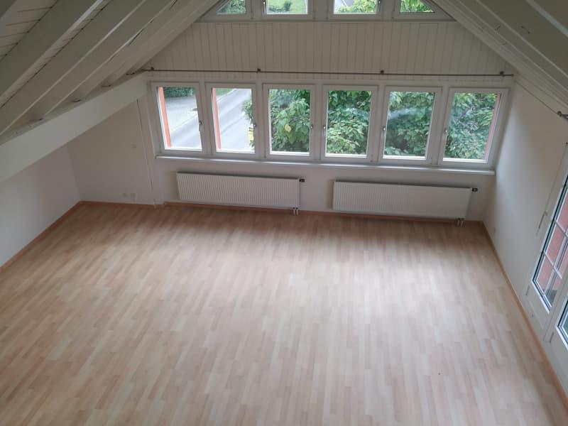 Grosse ganz neu renovierte Dachwohnung mit überdachtem Balkon, grosser Garten, WM/TU, Garage und PP