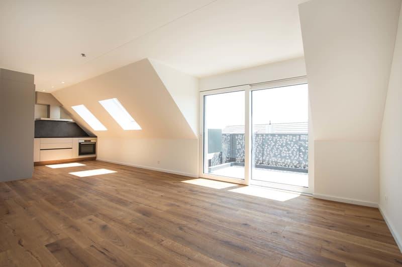 Die letzte Gelgenheit eine schöne Dachwohnung in diesem Neubau zu erwerben