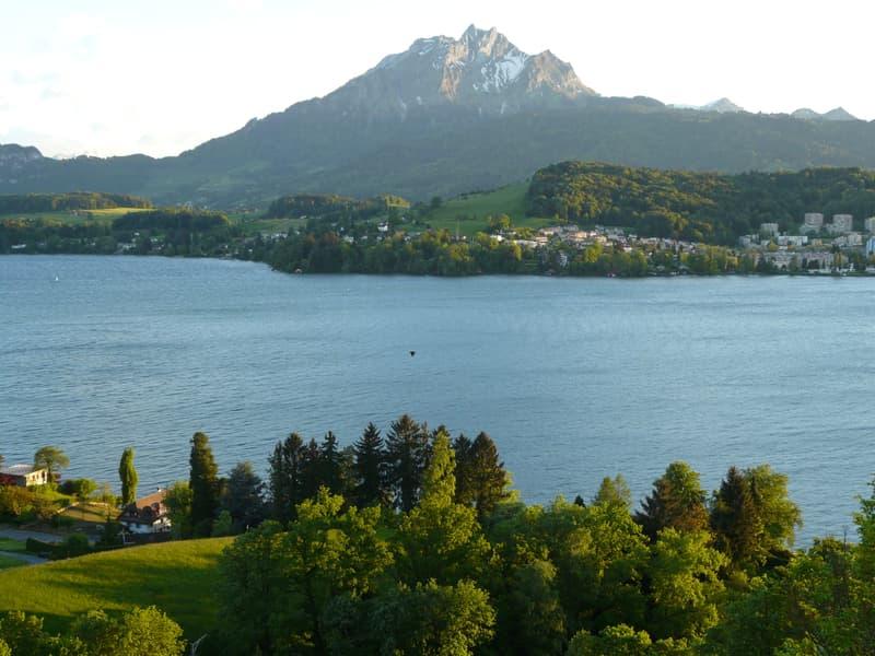 Grundstück an der besten Panorama-Seesichtlage der Stadt Luzern mit bewilligtem Bauprojekt