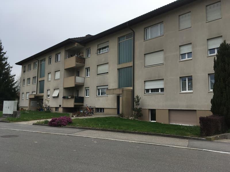 2-Zimmerwohnung in 4914 Roggwil