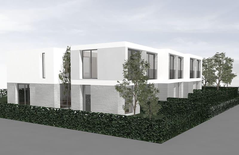 Six villas contemporaines à Vésenaz (2)