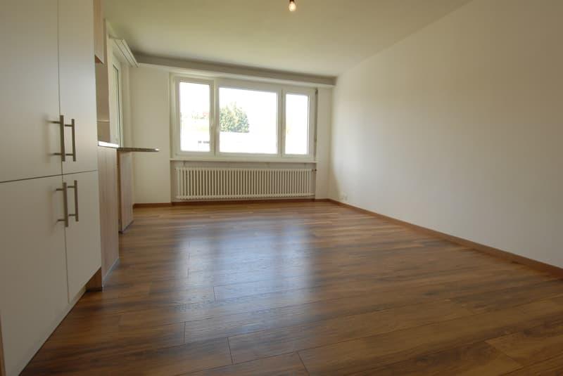 Moderne Single-Wohnung mit Balkon, Nähe öV und Einkauf