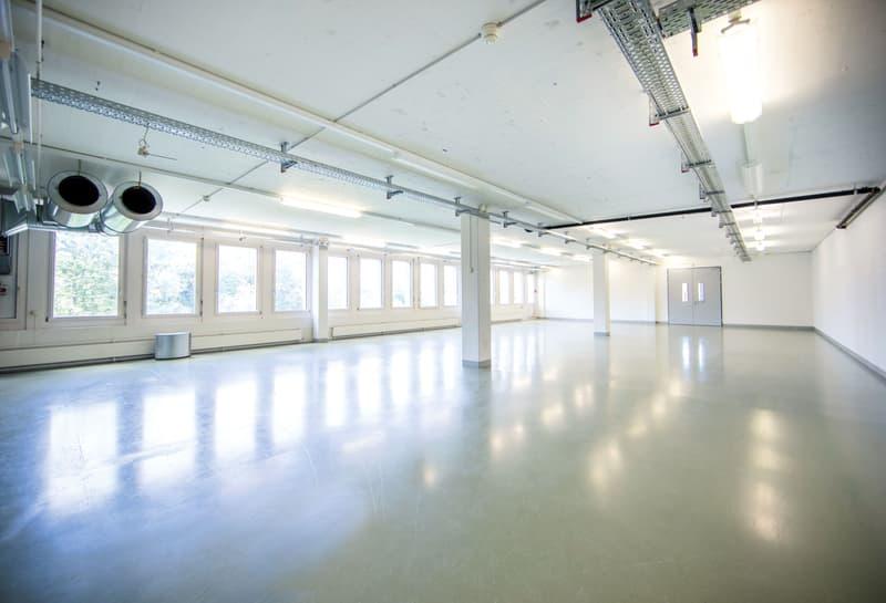 500m2 Atelier/Open-Space/Werkstatt... flexible Gewerbefläche