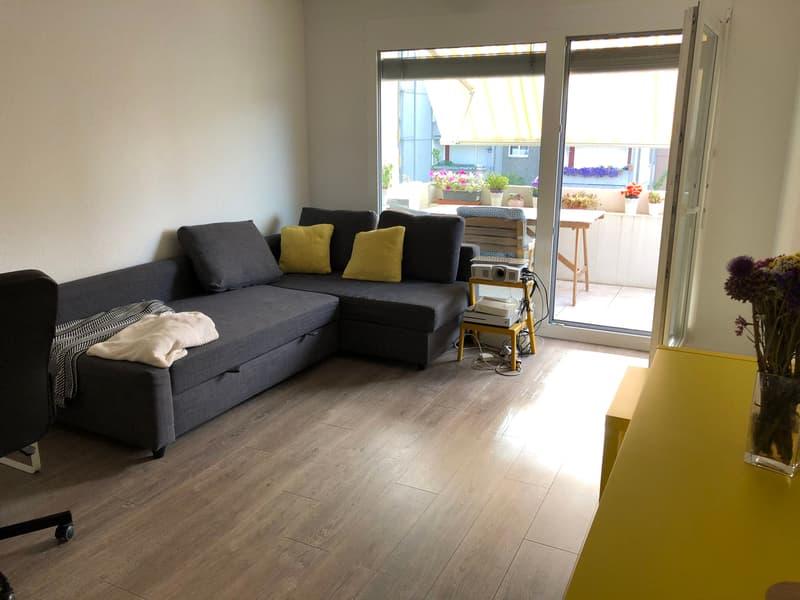 2 ½ Zimmer Apartment in Altstetten
