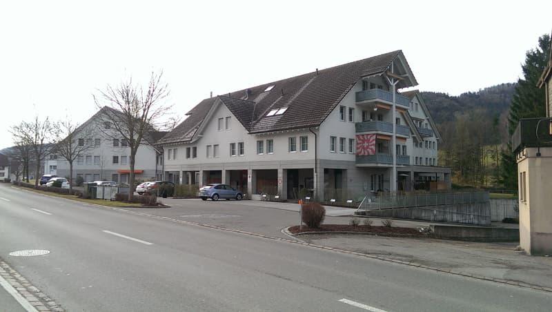 Frisch sanierte 3.5 Zimmerwohnung