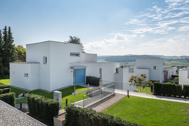 Moderne, hochwertige Doppeleinfamilienhäuser an bester Lage (1)
